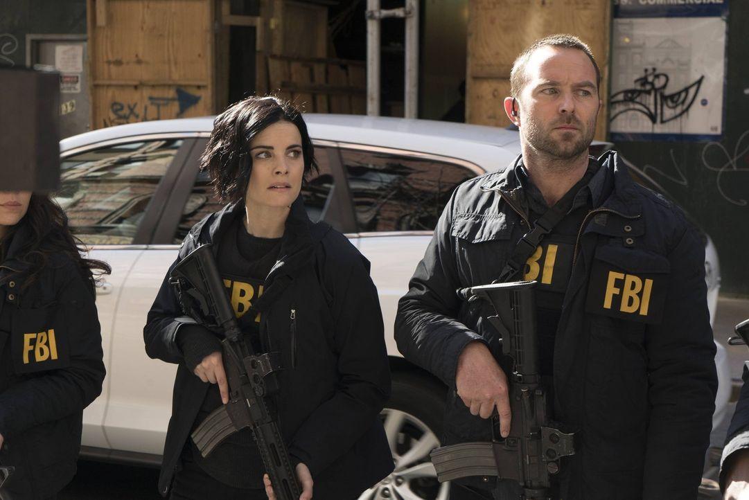 Jagen syrische Terroristen, die in den USA einen Anschlag planen: Weller (Sullivan Stapleton, r.) und Jane (Jaimie Alexander, l.) ... - Bildquelle: Warner Brothers
