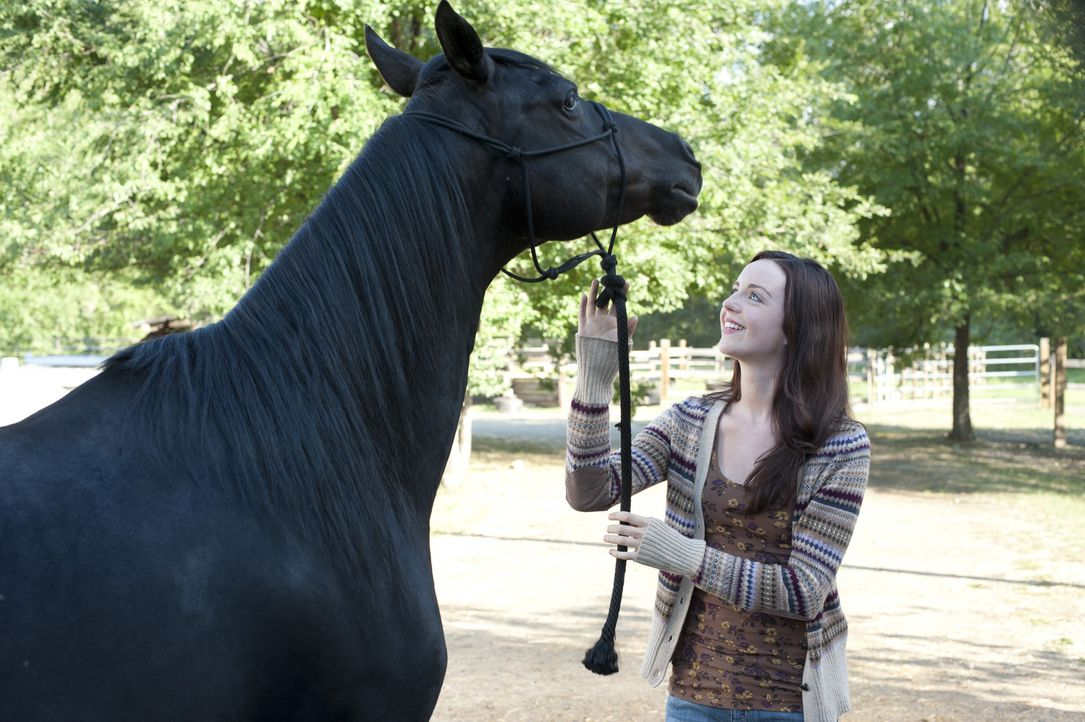 Zwischen Flicka und Kelly (Kacey Rohl) entsteht eine innige Freundschaft. Sie will ihn trainieren, um den bevorstehende Reitwettbewerb zu gewinnen ... - Bildquelle: 2012 Twentieth Century Fox Film Corporation. All rights reserved.