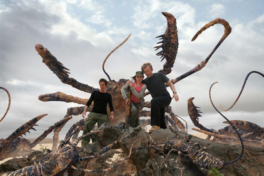 Auf Taylor (Mabel Rogers, M.), Nick (Douglas Henshall, r.) und Stephen (James Murray, l.) lauert eine unbekannte Gefahr ... - Bildquelle: ITV Plc
