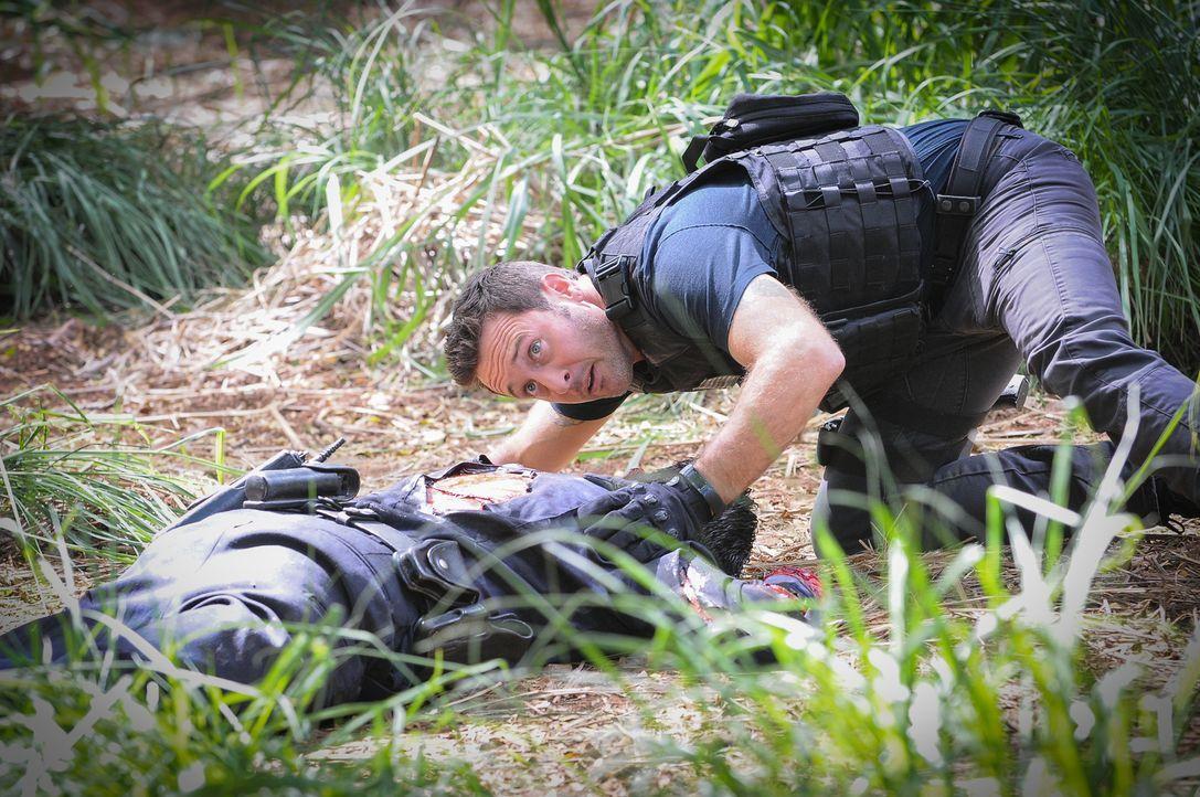 Bei den Ermittlungen in einem neuen Fall: Steve (Alex O'Loughlin) ... - Bildquelle: Norman Shapiro 2016 CBS Broadcasting, Inc. All Rights Reserved