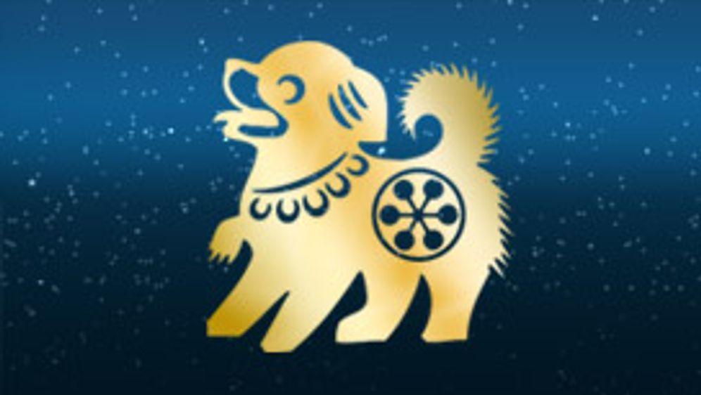 chinesisches horoskop hund frau 2019
