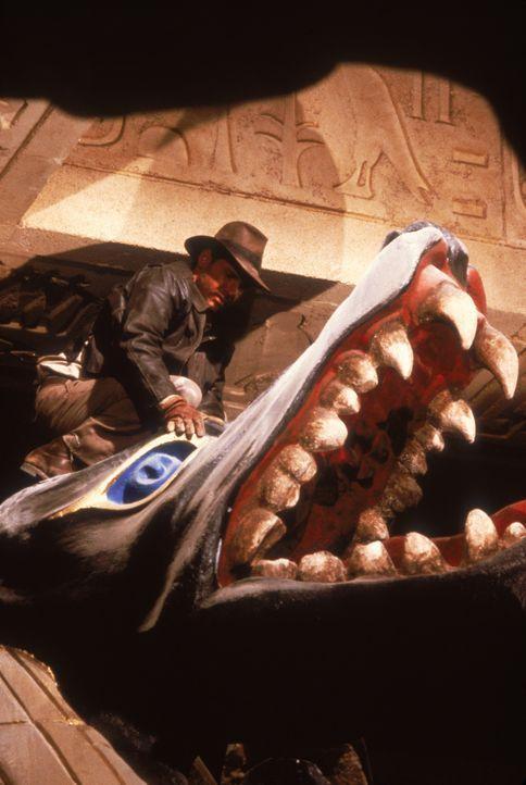 Jäger des verlorenen Schatzes mit Harrison Ford - Bildquelle: Paramount Pictures International