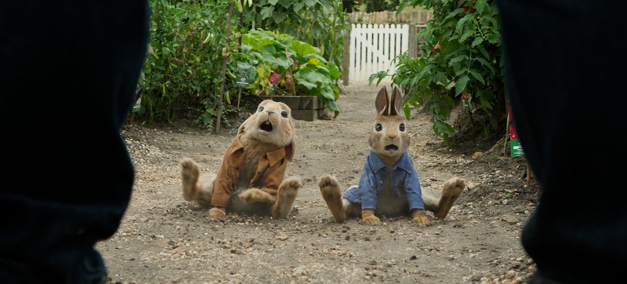 Benjamin (l.); Peter Hase (r.) - Bildquelle: 2018 CPII. All Rights Reserved. PETER RABBIT and all associated characters TM & © FW&Co. Limited.
