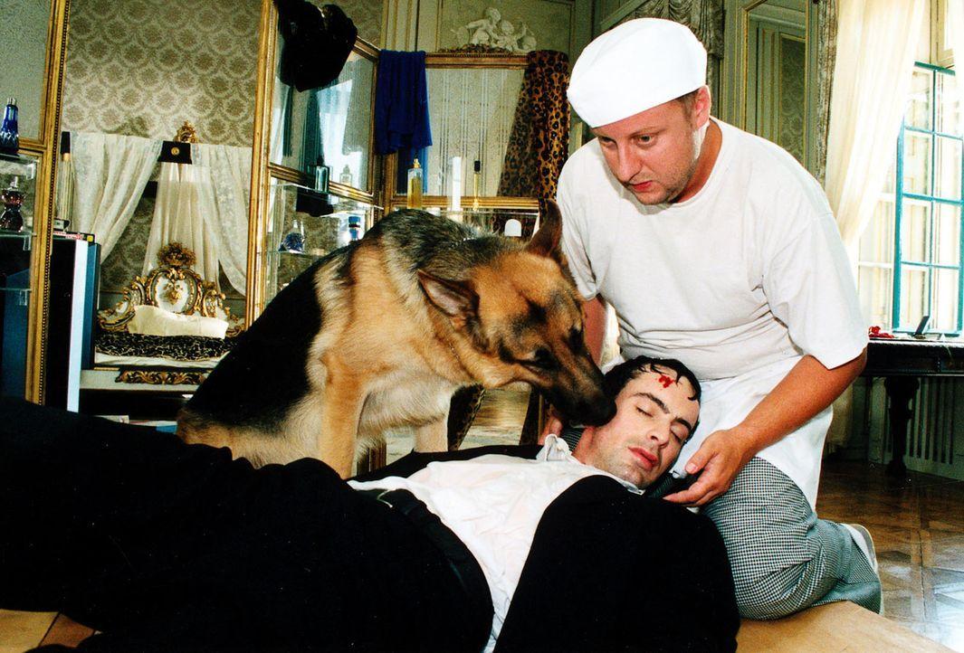 Fritz Kunz (Martin Weinek, r.) ist undercover im Hotel der Familie Haller als Küchenhilfe angestellt. Kommissar Brandtner (Gedeon Burkhard, l.) soll... - Bildquelle: Ali Schafler Sat.1