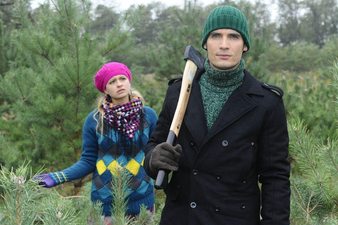 Treffen zufällig im Wald beim Weihnachtsbaumfällen aufeinander: Mia (Josephine Schmidt, l.) und Alexander (Paul Grasshoff, r.) ... - Bildquelle: SAT.1