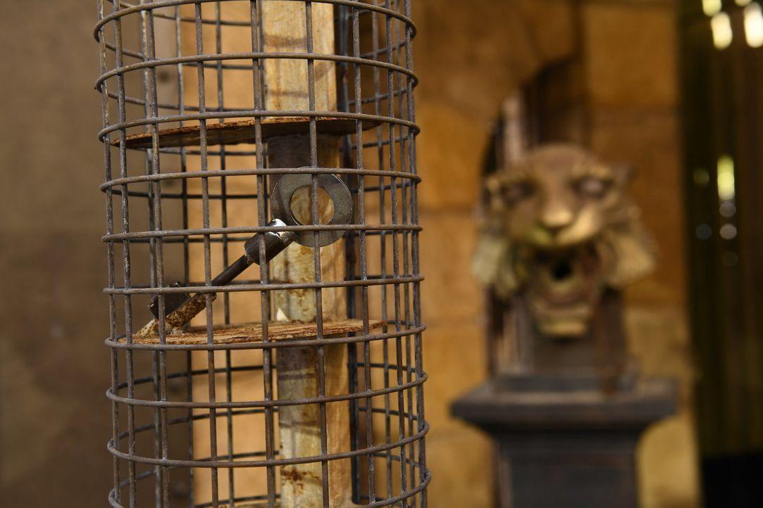 Fort Boyard - Bildquelle: Willi Weber SAT.1/Willi Weber