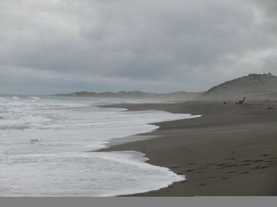 Es gibt kein Entkommen! Mitten im Ozean liegt eine Insel, auf der schwierige Jugendliche mit Hilfe drastischer Strafen erzogen werden sollen ...