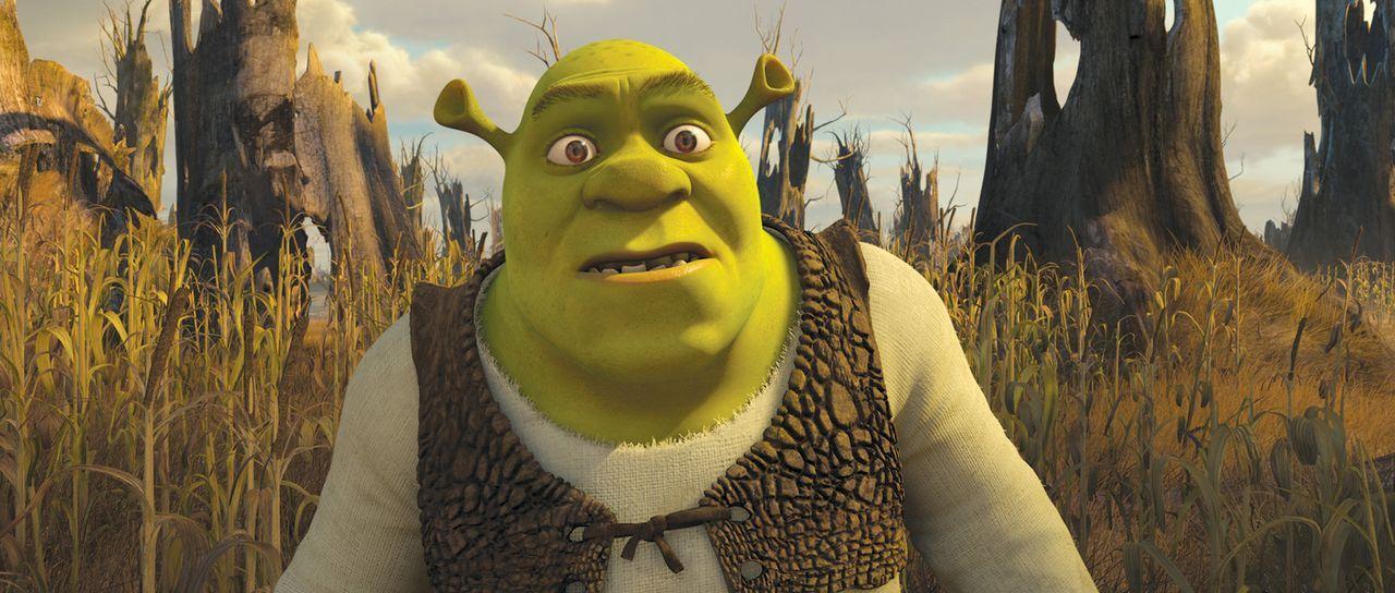 """Shrek findet sich in einer alternativen Parallelwelt des Königreichs """"Weit Weit Weg"""" wieder und hier geschehen äußerst seltsame Dinge ... - Bildquelle: 2012 DreamWorks Animation LLC. All Rights Reserved."""