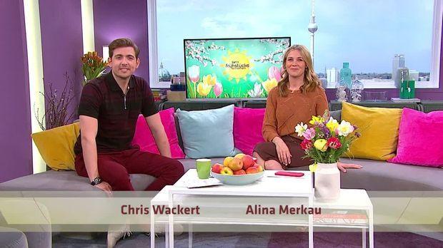 Frühstücksfernsehen - Frühstücksfernsehen - 08.04.2020: Oli P. Privat, Urlaub Zuhause & Die Neuesten Corona-fakten