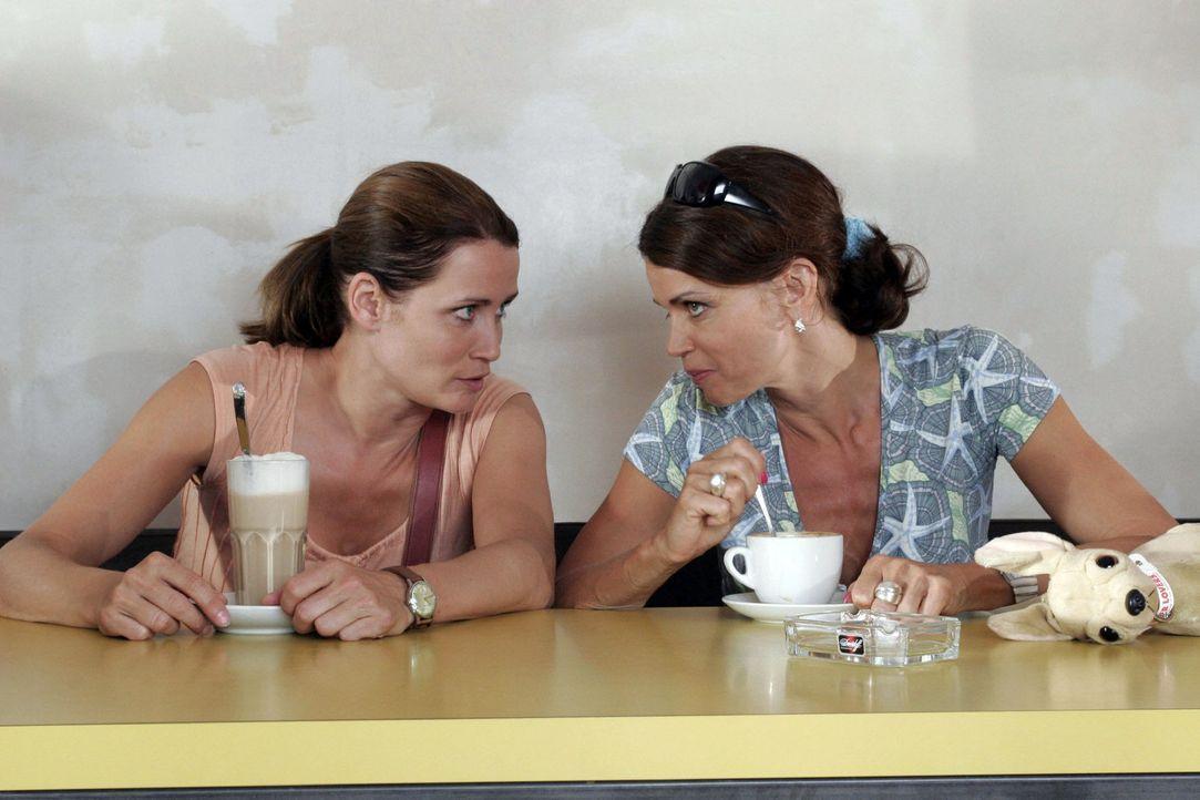 Eva (Anja Kling, l.) braucht dringend den Rat ihrer besten Freundin Maren (Gerit Kling, r.) ... - Bildquelle: Sat.1