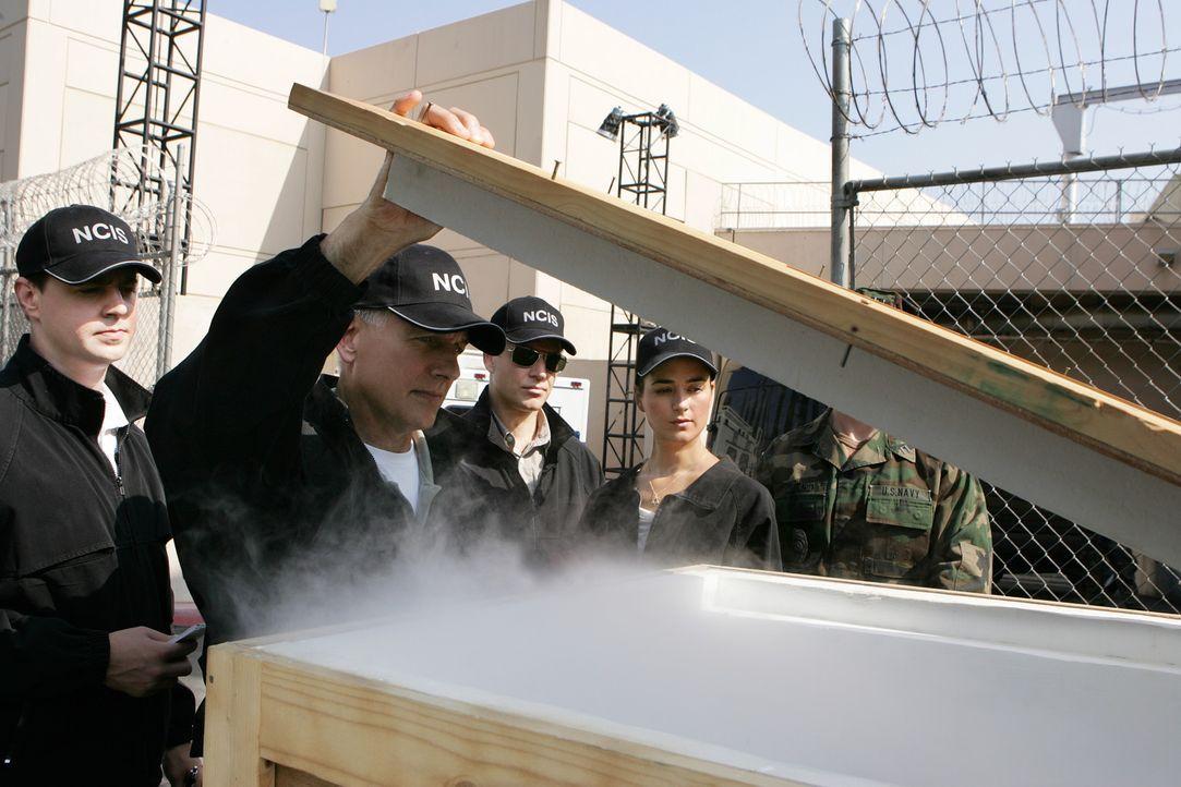 Ein neuer Fall wartet auf das NCIS Team: Gibbs (Mark Harmon, 2.v.l.), McGee (Sean Murray, l.), Ziva (Cote de Pablo, 2.v.r.) und Tony (Michael Weathe... - Bildquelle: CBS Television