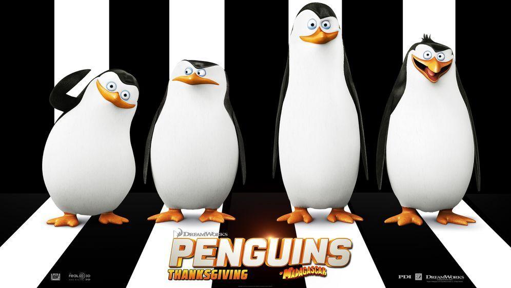 Die Pinguine aus Madagascar - Bildquelle: 2014 DreamWorks Animation, L.L.C.  All rights reserved.