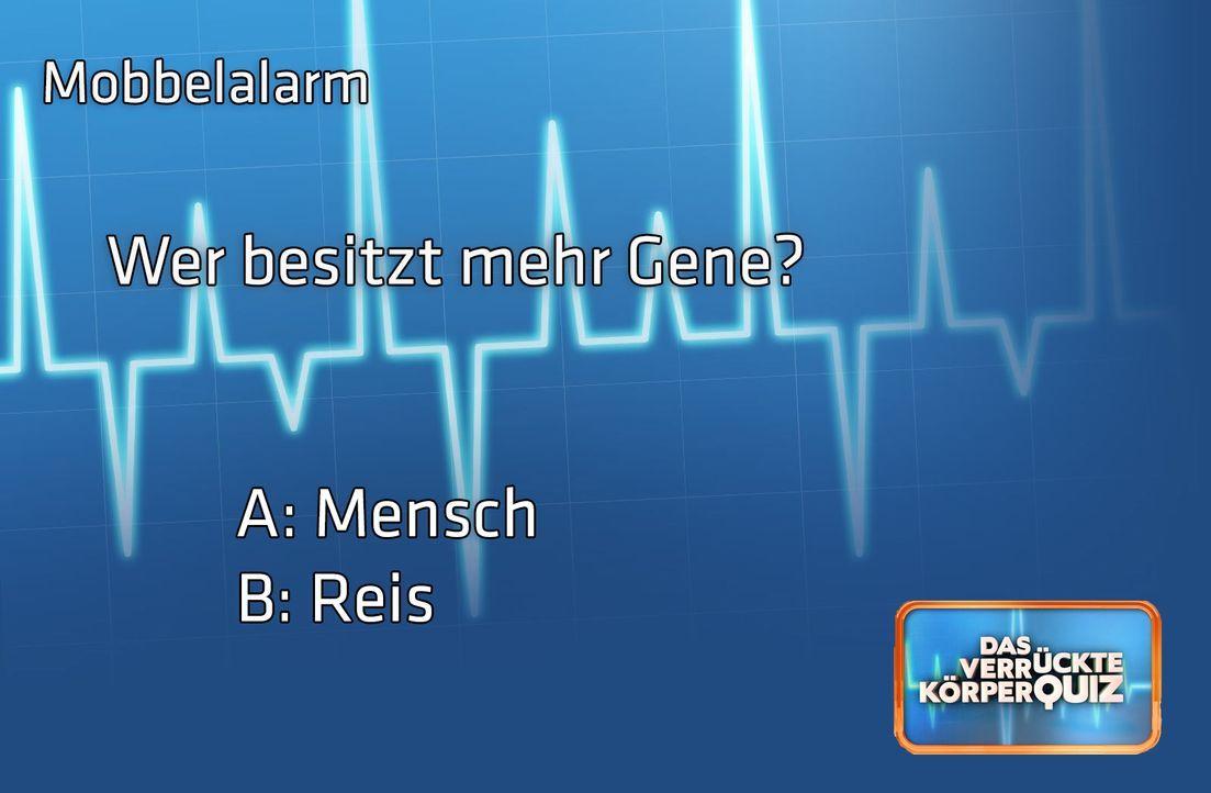 Frage7