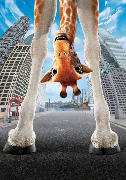Das größte Abenteuer ihres Lebens wartet auf Giraffe Bridget ... - Bildquelle: Disney Enterprises, Inc.  All rights reserved