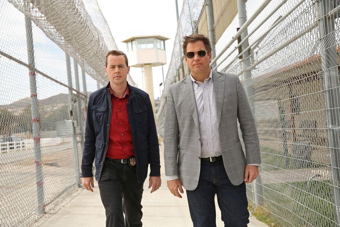Soll er Delilah fragen, ob sie bei ihm einziehen will? McGee (Sean Murray, l.) holt sich in Liebesdingen Rat bei DiNozzo (Michael Weatherly, r.). - Bildquelle: CBS Television