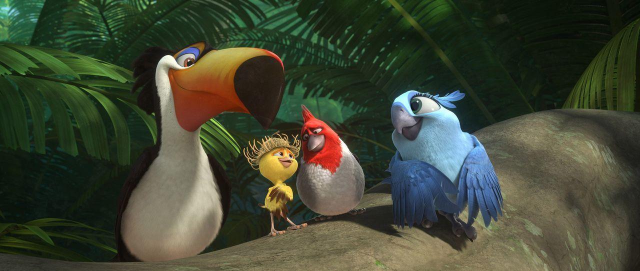 Sind absolut begeistert von der verlassenen Natur in den Regenwäldern des Amazonas: Rafael (l.), Nico (2.v.l.), Pedro (2.v.r.) und Carla (r.) ... - Bildquelle: 2014 Twentieth Century Fox Film Corporation.  All rights reserved.