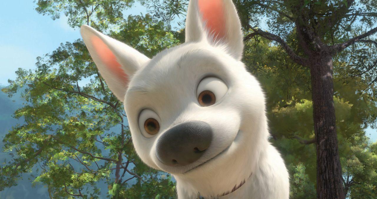 Bolt spielt schon sein ganzes Leben seine Rolle in einer berühmten Fernsehserie, sodass er glaubt, die Filmsets, Abenteuer und seine Kräfte seien... - Bildquelle: Disney Enterprises, Inc.  All rights reserved