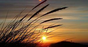 Silvesterurlaub_2015_11_18_Silvester in Dänemark_Bild1_pixabay