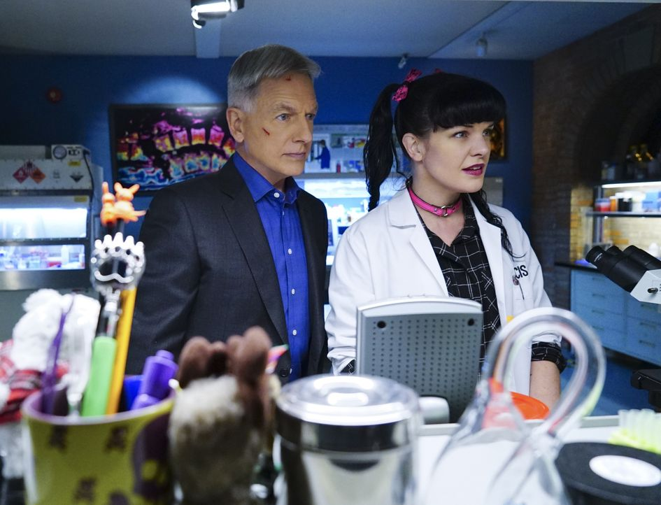 Megan, die Tochter des Secretary of the Navy, Sarah Porter, wurde entführt. Das Team um Gibbs (Mark Harmon, l.) und Abby (Pauley Perrette, r.) schli... - Bildquelle: Neil Jacobs 2016 CBS Broadcasting, Inc. All Rights Reserved