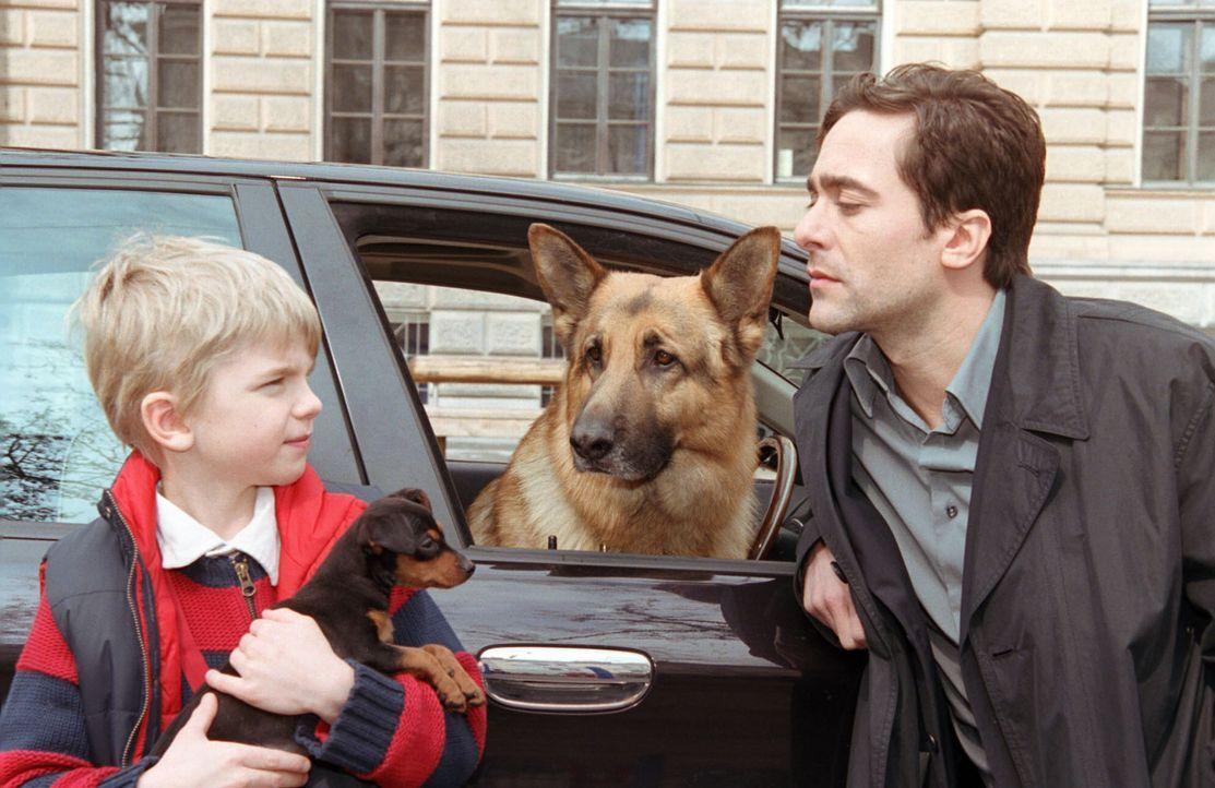 Marc (Alexander Pschill, r.) und Rex bringen den kleinen Sascha (Calvin Klaus, l.) zur Schule. - Bildquelle: Sat.1