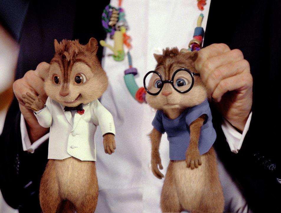 Alvin (l.), Simon (r.) und Theodore machen Urlaub auf einem Luxuskreuzer und verwandeln die Decks in ihren persönlichen Spielplatz. Doch dann erlei... - Bildquelle: 2011 Twentieth Century Fox Film Corporation. All rights reserved.