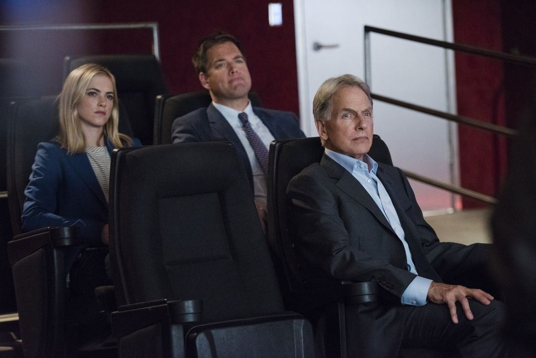 Das Team um Gibbs (Mark Harmon, r.), DiNozzo (Michael Weatherly, M.) und Bishop (Emily Wickersham, l.) unterstützt einen DEA Agenten aus San Diego,... - Bildquelle: Eddy Chen CBS Television