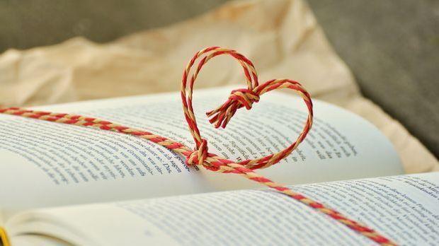 Buch lesen