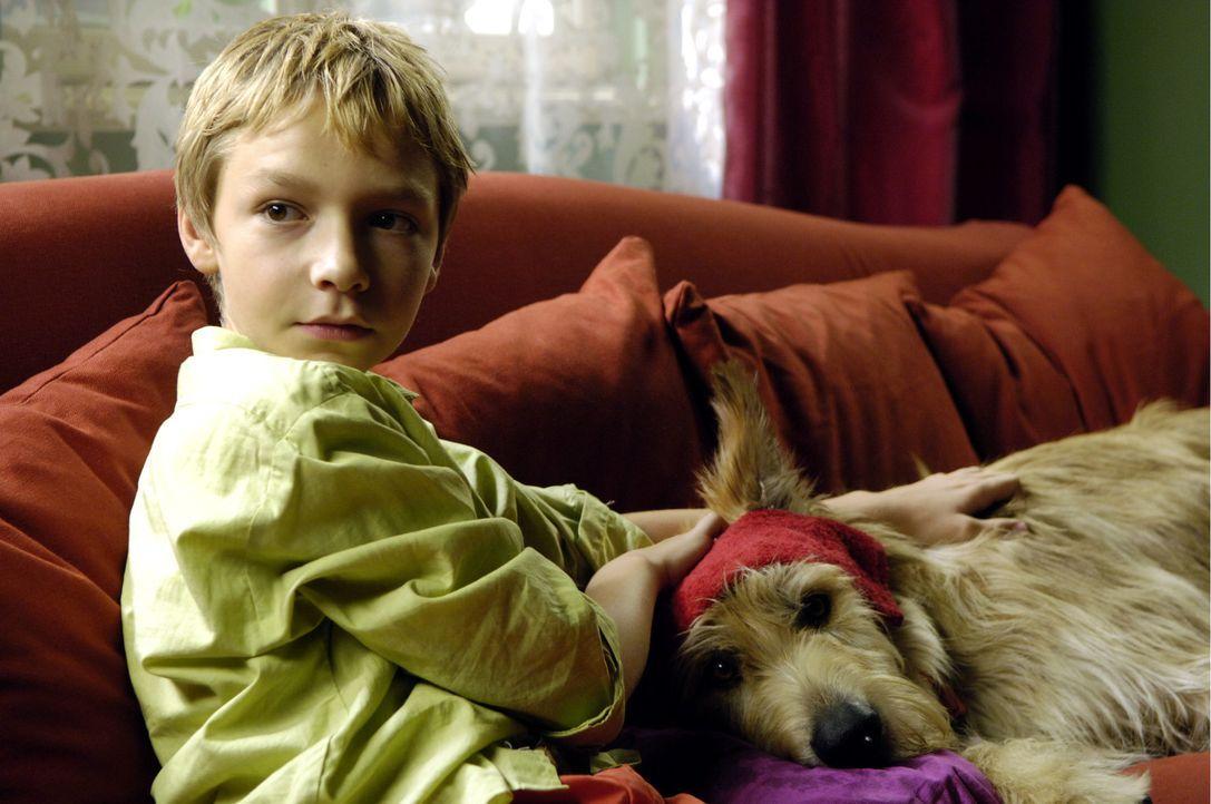 Der 12-jährige Max (Manuel Steitz) und sein verwitweter Vater sind ein eingespieltes Team. Mit Unterstützung der neuen Nachbarin, geht Max größt... - Bildquelle: Constantin Film Verleih GmbH