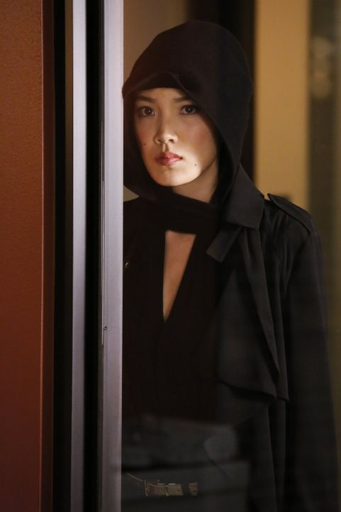 Lees Schwester Kim (Jessika Van) riskiert ihr Leben als sie ihm einen Tipp zur Quantou-Mafia gibt ... - Bildquelle: Warner Brothers