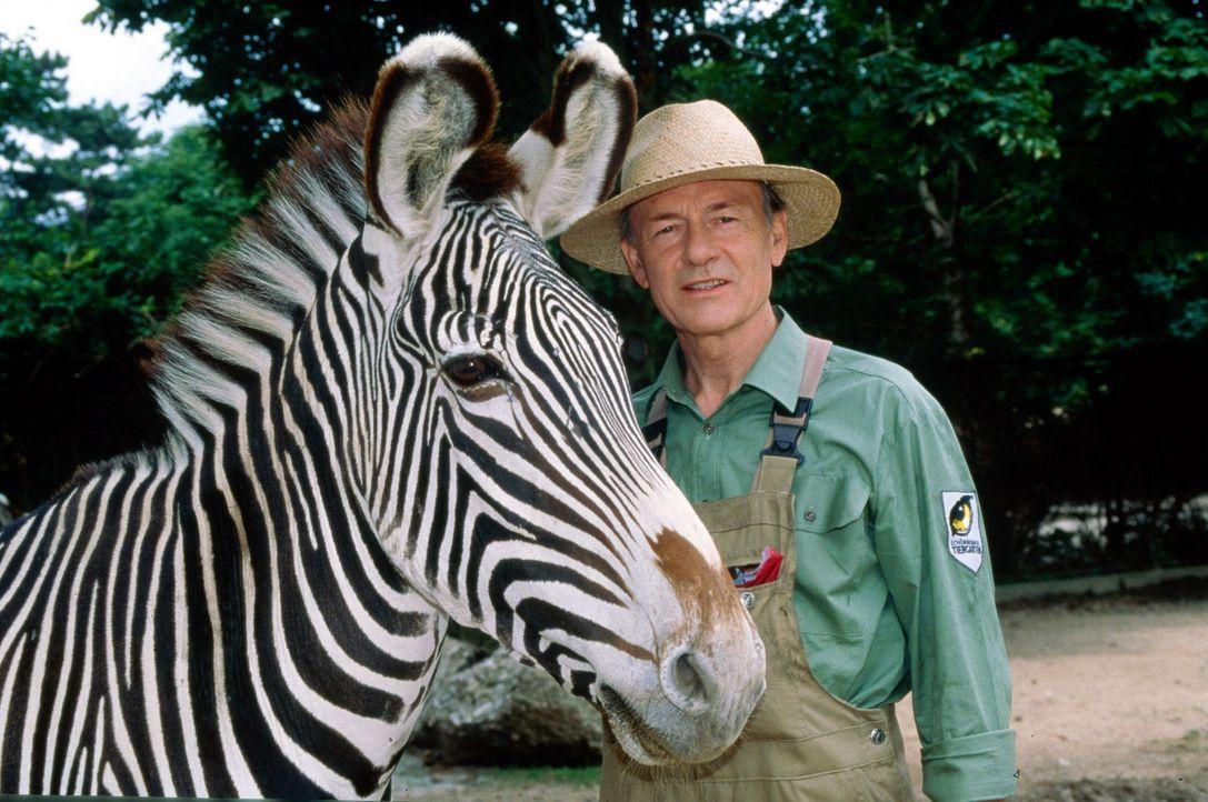 Der Mann mit den 1000 Gesichtern (Joachim Bissmeier) hat sich in den Wiener Zoo geflüchtet ... - Bildquelle: Sat.1