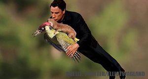 Wiesel_Travolta