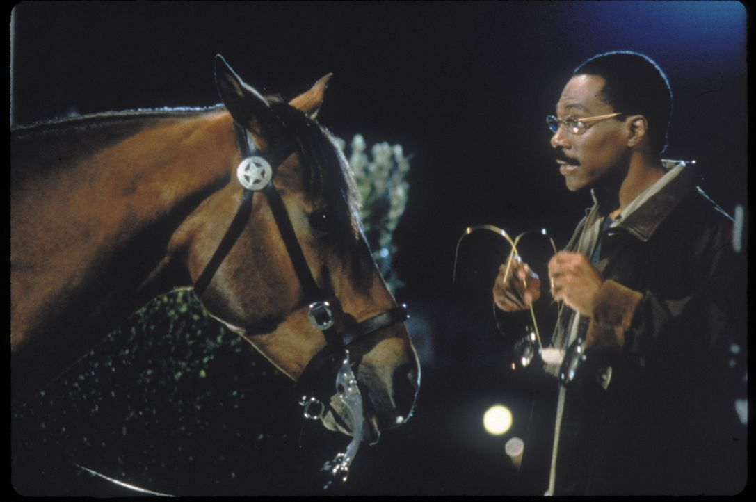 Der Freund der Tiere: Dr. Dolittle (Eddie Murphy) kann ihnen nicht nur medizinischen Beistand geben, sondern auch mit ihnen sprechen ... - Bildquelle: 1998 Twentieth Century Fox Film Corporation. All rights reserved.