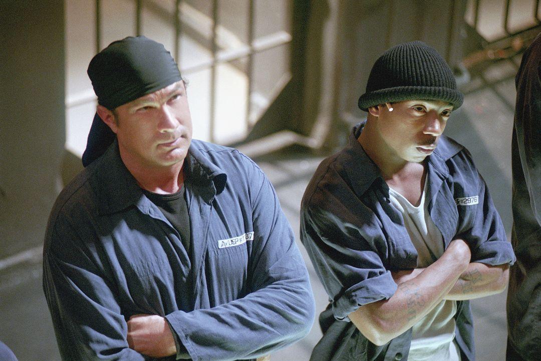 Einst rettete Undercover Agent Sascha Petrosevitch (Steven Seagal, l.) seinem Freund, dem Kriminellen Nick (Ja Rule, r.) das Leben. Nun kann er auf... - Bildquelle: 2003 Sony Pictures Television International. All Rights Reserved.