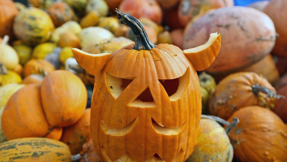 Halloween Ideen Essen.Halloween Buffet Ideen Furs Gruselmahl Sat 1 Ratgeber