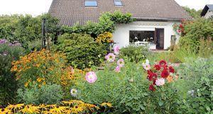 Gartengestaltung_2016_05_10_Herbststauden_Bild 1_fotolia_Krawczyk-Foto