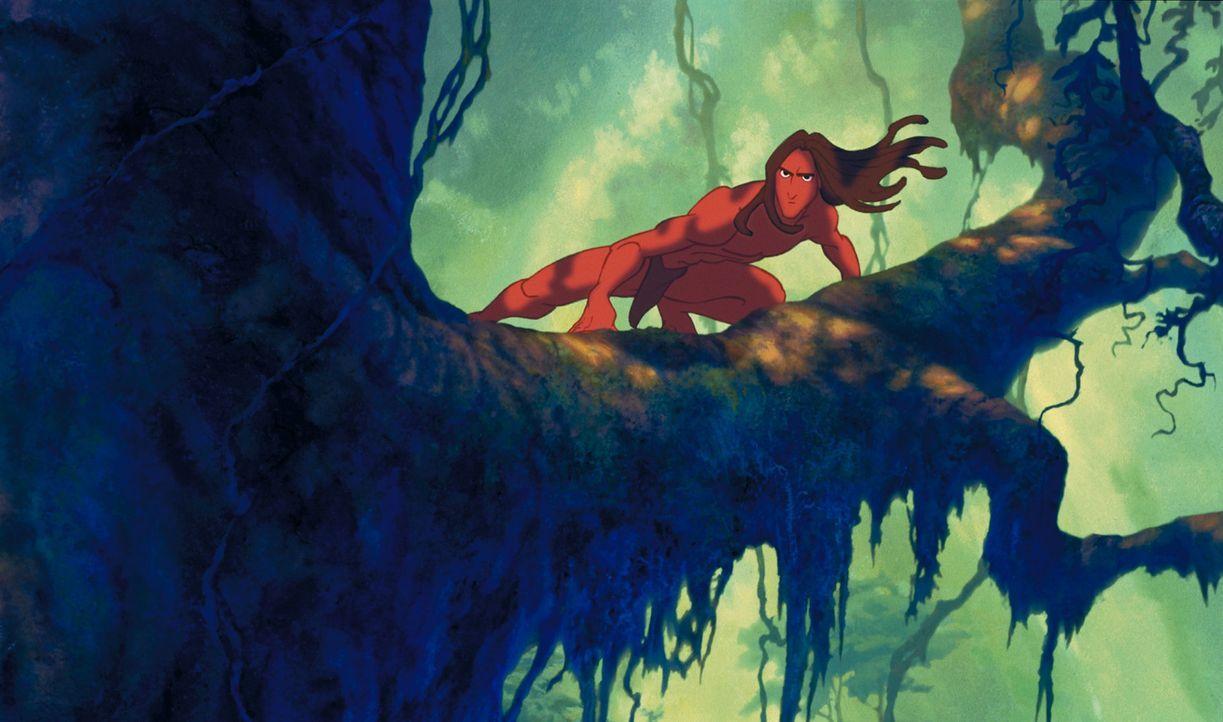 Eines Tages wird der erwachsene Tarzan von dem blutgierigen Leoparden Sabor angegriffen. Als es ihm gelingt, den Mörder seiner Eltern und Kerchaks B... - Bildquelle: Edgar Rice Burroughs Inc. and Disney