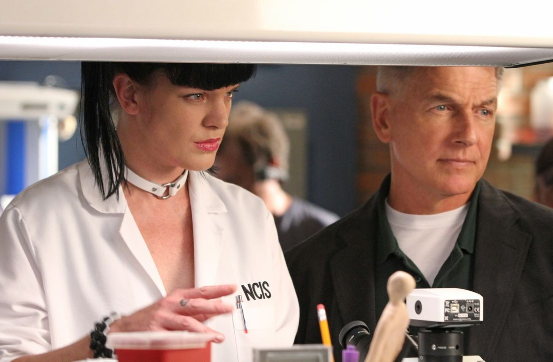 Ein neuer Fall beschäftigt Gibbs (Mark Harmon, r.) und Abby (Pauley Perrette, l.) ... - Bildquelle: CBS Television