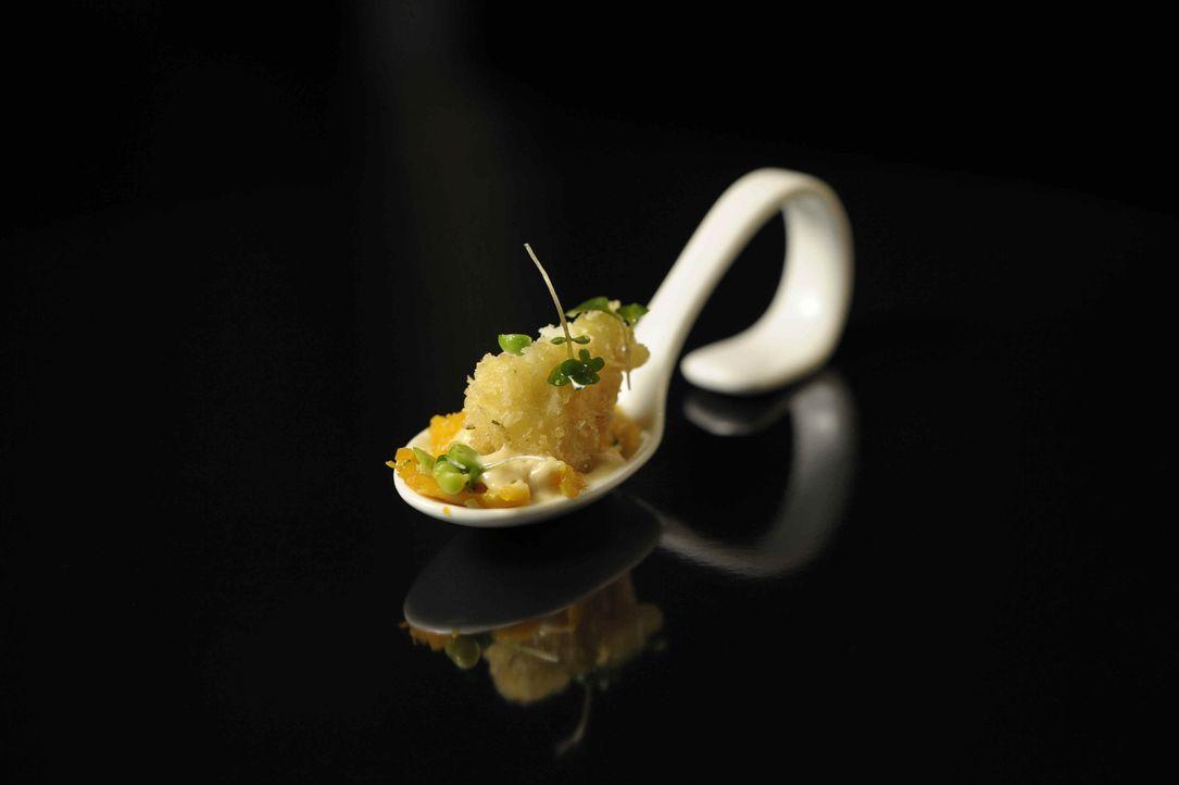 """Das Besondere bei """"The Taste"""": Alle Komponenten der Speise müssen auf einem Löffel angerichtet werden. Eine knifflige Aufgabe ... - Bildquelle: Oliver S. SAT.1"""
