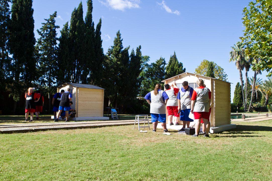 Für den zweiten Wettkampf in dieser Woche müssen Team Rot und Team Schwarz ein stabiles Gartenhaus errichten. Das Team, das gewinnt, erhält einen Zw... - Bildquelle: Enrique Cano SAT.1