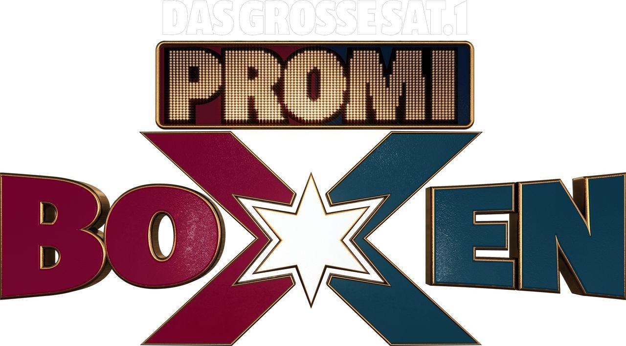 Das große SAT.1 Promiboxen - Artwork - Bildquelle: SAT.1