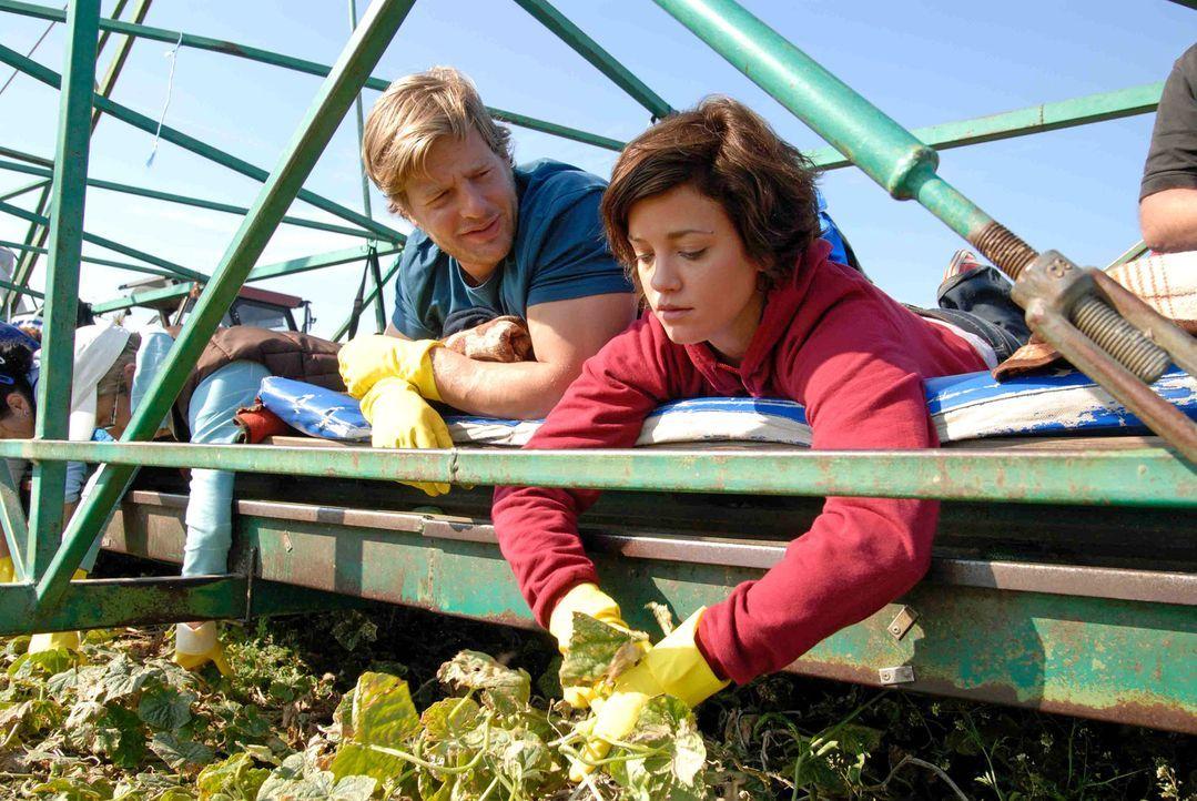 Michael (Henning Baum, l.) vermittelt Susanne (Muriel Baumeister, r.) einen Job als Erntehelferin. - Bildquelle: Hardy Spitz Sat.1