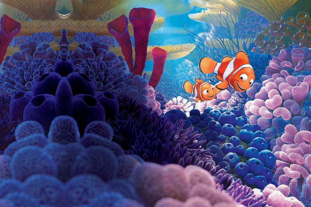 Nemo (l.) ist alles, was Marlin (r.) noch hat. Der liebevolle Vater versucht seinen Jungen vor allem zu beschützen, um ihn nicht auch noch zu verlie... - Bildquelle: Walt Disney Pictures