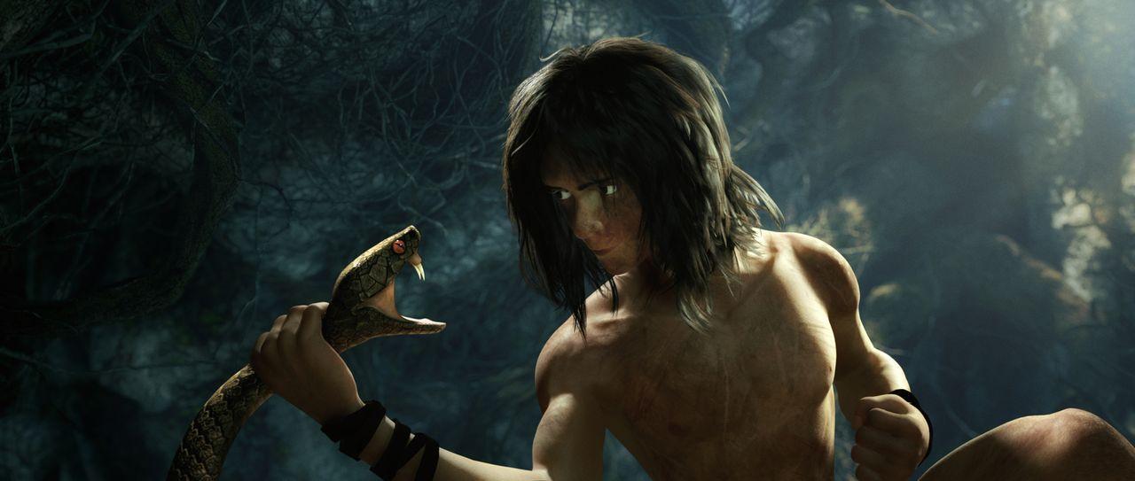 Eine gefährliche Schlange greift Tarzan an. Doch er weiß sich zu helfen:  Gekonnt umschlingt er ihre Kehle und schaut ihr dabei tief in die Augen. - Bildquelle: Constantin Film