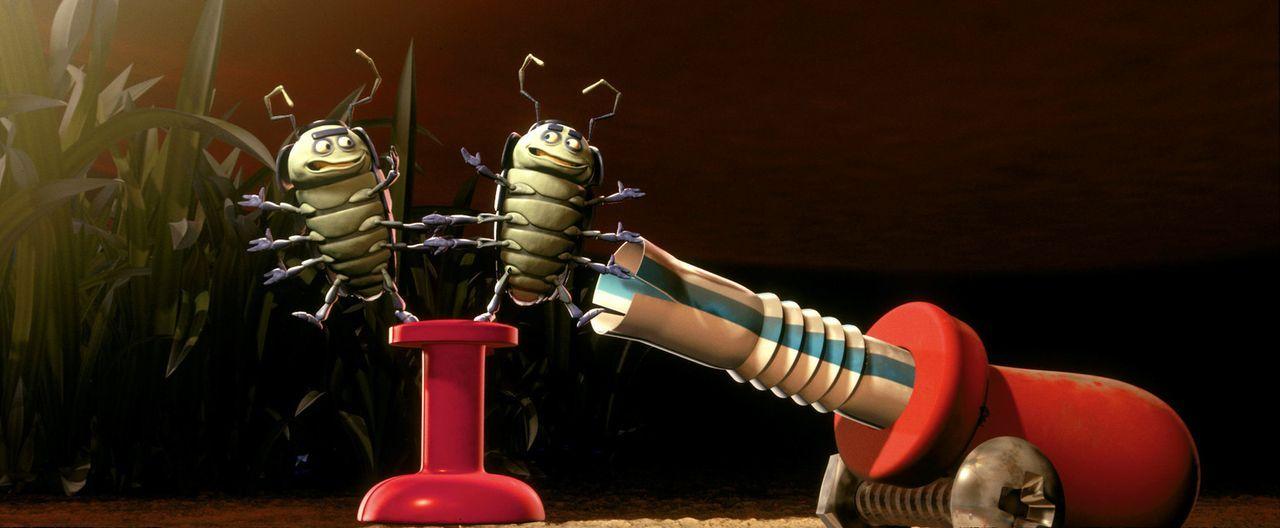 Die beiden ungarischen, akrobatischen Pillendreher Chiwap und Chichi sind die Attraktion des Insektenzirkus' ... - Bildquelle: Disney/Pixar