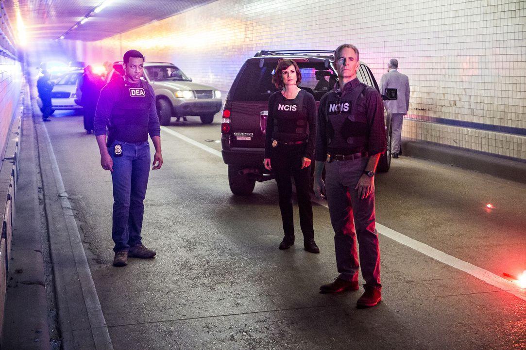 Pride (Scott Bakula, r.), Brody (Zoe McLellan, 2.v.r.) und der Rest des Teams verfolgen die Spur von gestohlenem TNT der Navy zu einem Drogenring, d... - Bildquelle: Skip Bolen 2016 CBS Broadcasting, Inc. All Rights Reserved