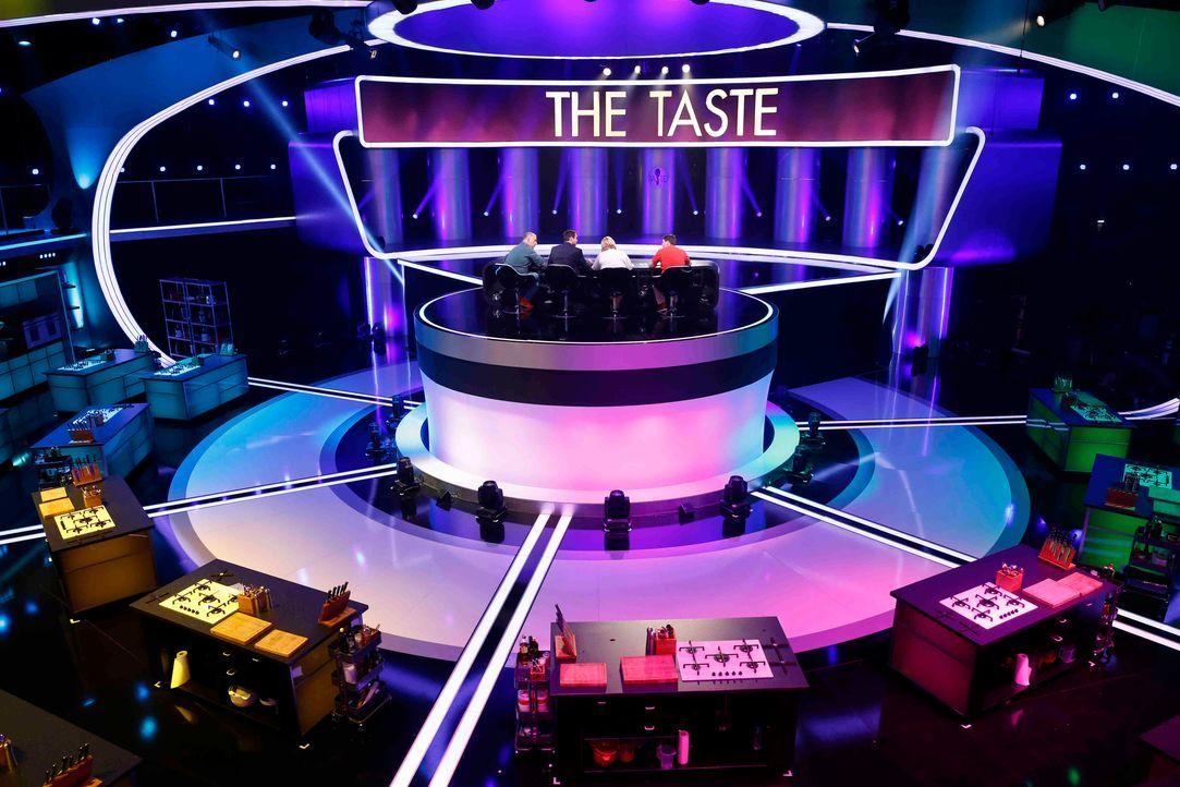 The_Taste_Staffel_Episode4_Guido_Engels7 - Bildquelle: SAT.1/Guido Engels
