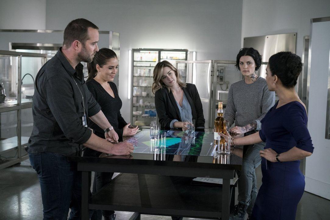 Jane (Jaimie Alexander, 2.v.r.) nutzt jede Gelegenheit, um Roman an sein neues Dasein als FBI-Informant zu gewöhnen. Sie überzeugt ihre Kollegen (v.... - Bildquelle: Warner Brothers