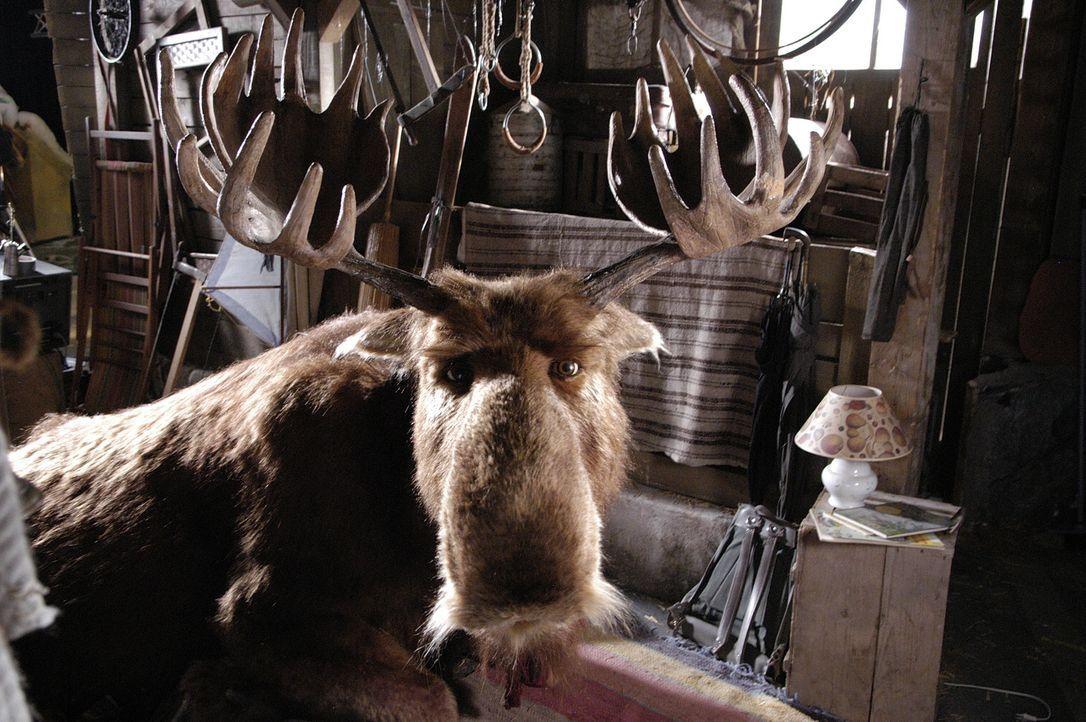Mr. Moose, der Elch des Weihnachtsmannes, kracht in der Vorweihnachtszeit durch das Dach der Familie Wagner und wirbelt deren Leben gehörig durchei... - Bildquelle: Buena Vista International Television