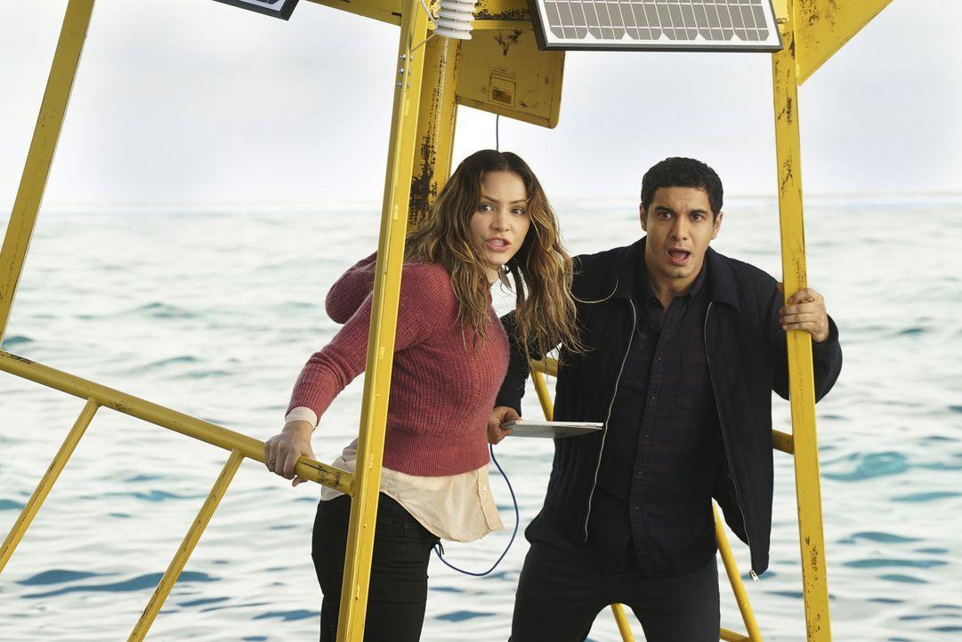 Als das Schiff von Paige (Katharine McPhee, l.) und Walter (Elyes Gabel, r.) mitten auf dem Pazifischen Ozean explodiert, während sie sich auf Schat... - Bildquelle: Monty Brinton 2016 CBS Broadcasting, Inc. All Rights Reserved.
