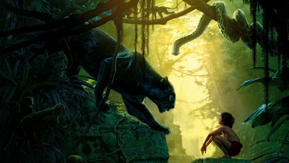 The Jungle Book - Bildquelle: Disney Enterprises, Inc. All Rights Reserved.